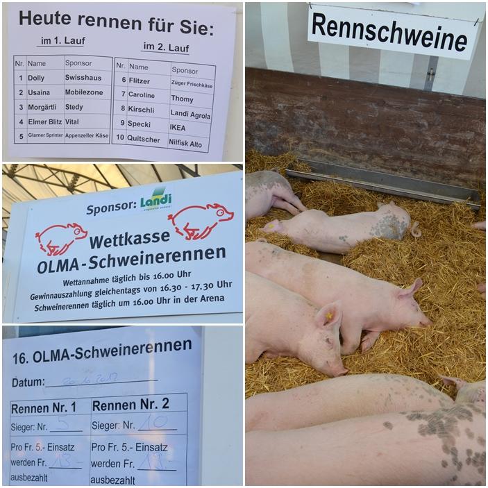 olma-schweiz (6)