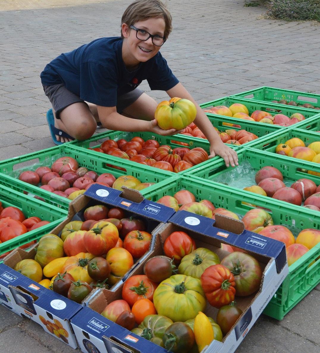 tomaten preith (3)