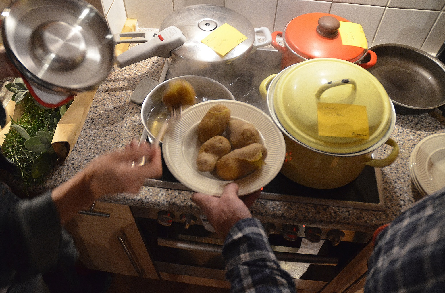 kartoffeltest1